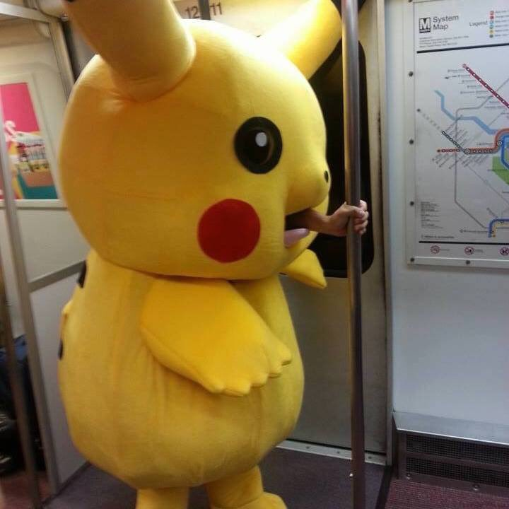 fig:character:pikachu_train.jpg